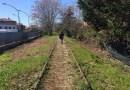 Per lo sviluppo della valle del Metauro si deve tener conto anche del tracciato dell'ex ferrovia Fano-Urbino