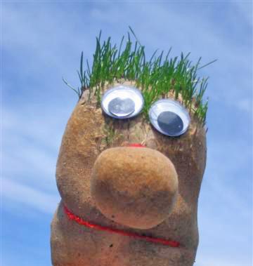 bonhomme à cheveux d'herbe
