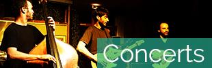 Les concerts à la Maison de la Terre