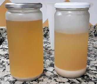 Diferencia entre las capas de mosto para recolectar levadura