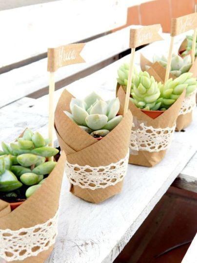 succulentes-cadeaux-invites