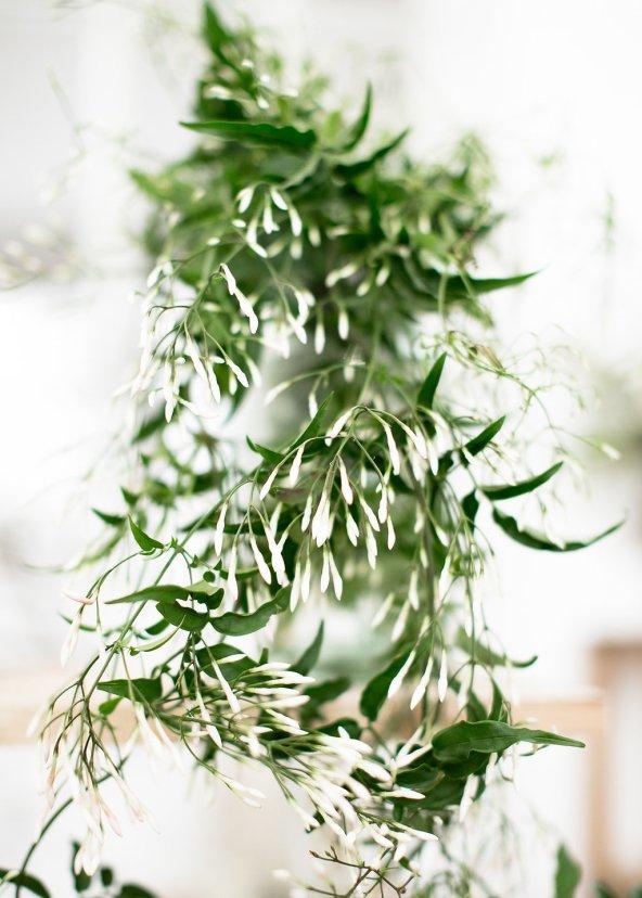 Workshop-coiffures-de-mariee-minimaliste-vegetal-floral-amélie-gouttenoire-photos-frederick-dewitte (14)