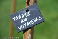tomate_voyageurs