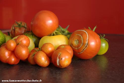 tomates_2015
