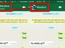 Cara Menghilangkan Status Online di Whatsapp