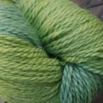 Baby Llama - Green Grapes