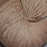 Superwash Sock Yarn - Colorado Mushrooms