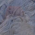 Hand-dyed Silk Fiber -  Stardust