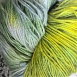 Superwash Sock Yarn - Cymbidium Orchid
