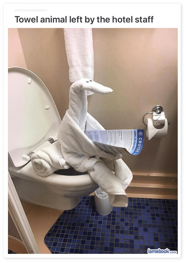 A Dry Sense Of Humor