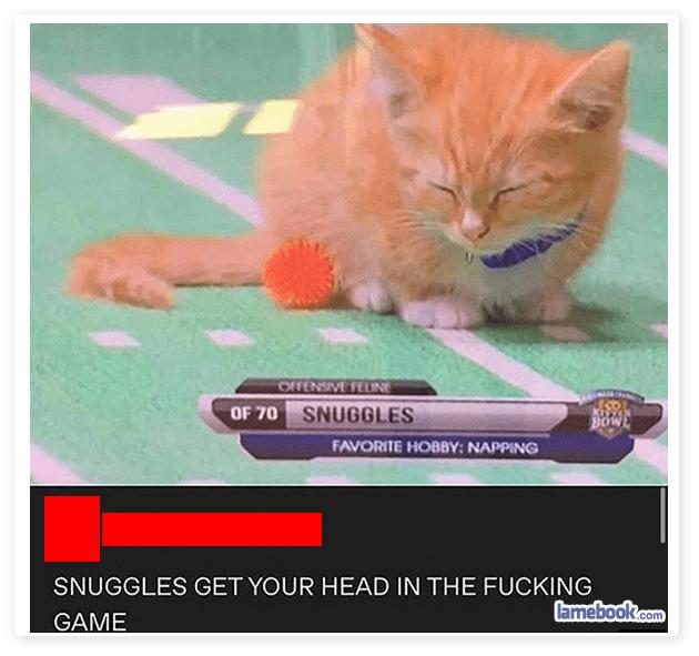 Snuggle Race