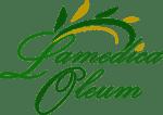 Cropped Logo Sito Wp E1578835167176 1.png