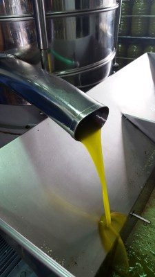 olive-oil-1332942_1920
