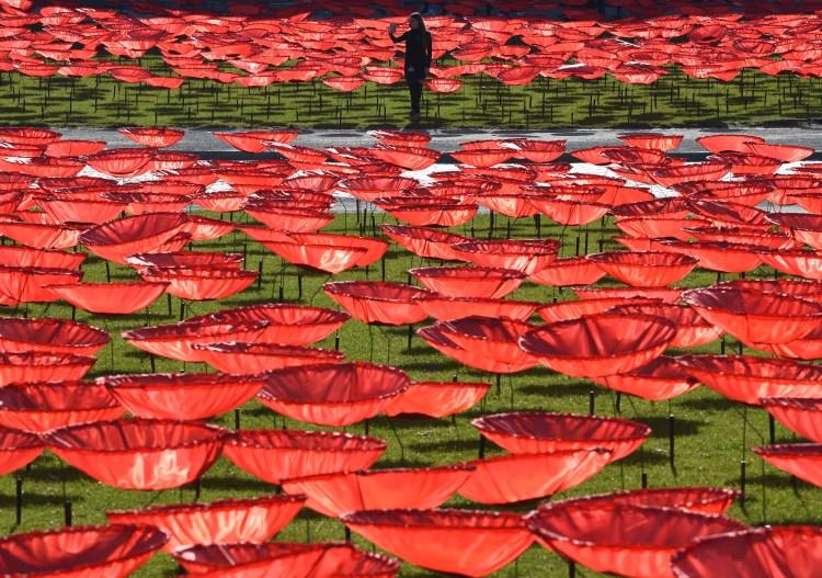 (Photo by Christof STACHE / AFP)