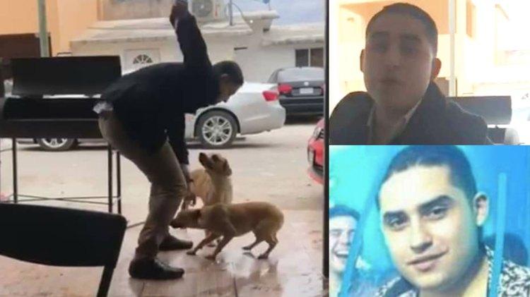 Un individuo agredió a un perro, lo dejó sufriendo y él bebió de su cerveza (Foto: Twitter @miryjuarez)
