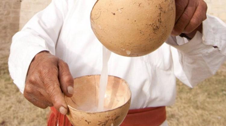 En México todavía se consume el pulque (Foto: Archivo)