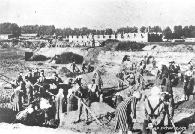Prigioniere al lavoro - Auschwitz 1