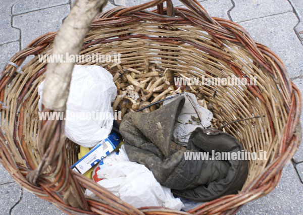 cesto-funghi-vittima-ottobre-2012