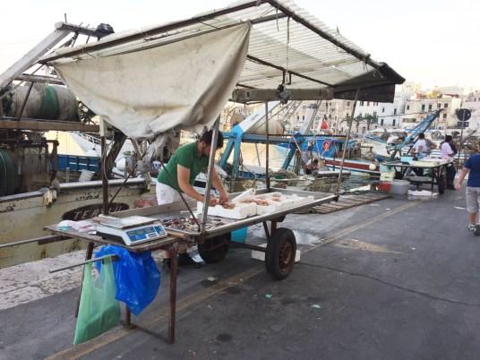 Trani, i pescatori nel porto