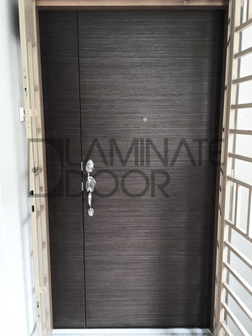 Veneer Double Leaf Main Door