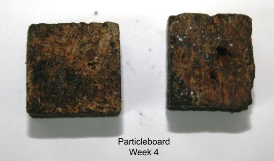 Particleboard_week 4 (resize)