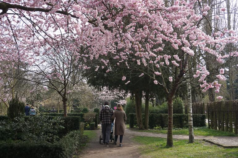 pareja paseando por el Cementerio de Assistens