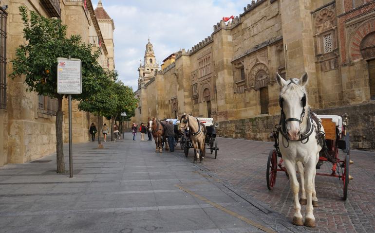 Lateral de la Mezquita de Córdoba con caballos en primer plano