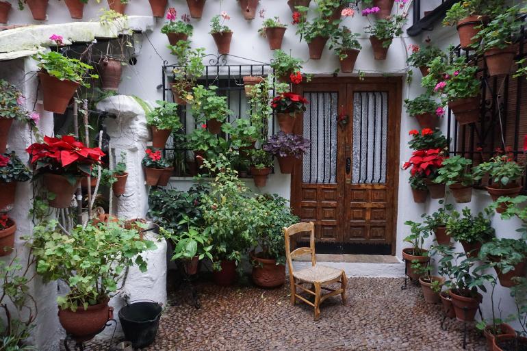 patio cordobés repleto de maceteros con flores y plantas y una silla de madera en medio
