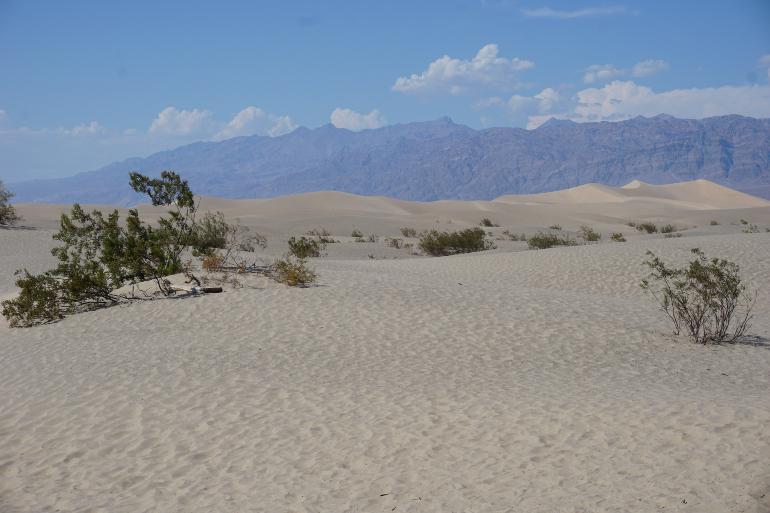 Dunas de arena en Death Valley