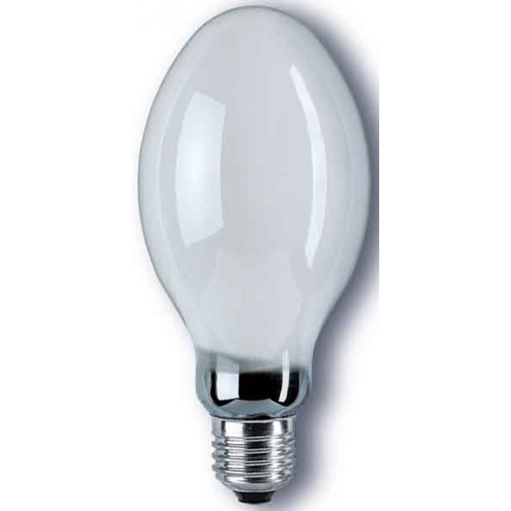 Natural Lighting Light Bulbs