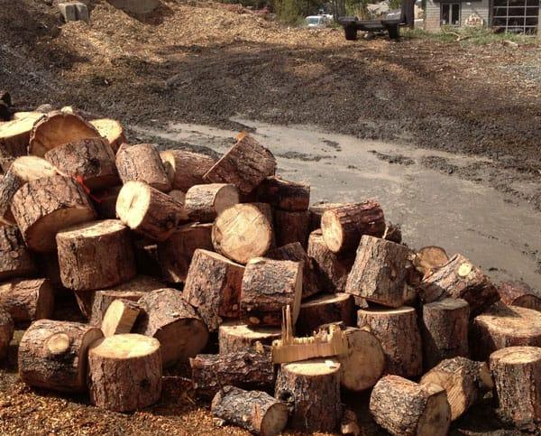 firewood-logs