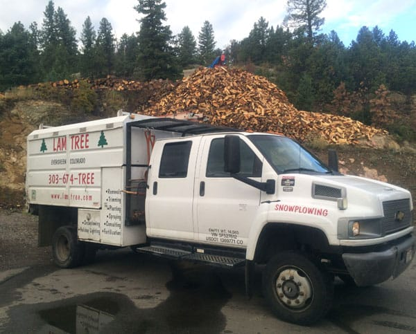 firewood-pile-with-truckv2