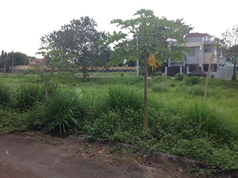 Residential Lot For Sale 150 Sqm Lot 25 Block 35 Town