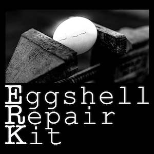 Eggshell Repair Kit