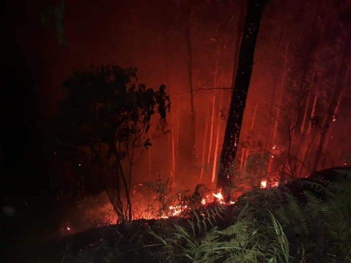 Zona boscosa del sur del Huila afectada por incendio 1 19 febrero, 2020