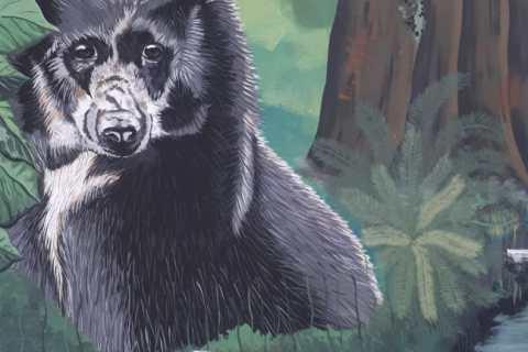 El mural que expone la fauna silvestre del Huila 4 27 mayo, 2020