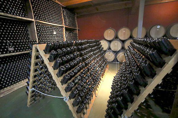 En la bodega se encuentran los vinos espumantes y tinto, así como rosado en su fase de maduración.