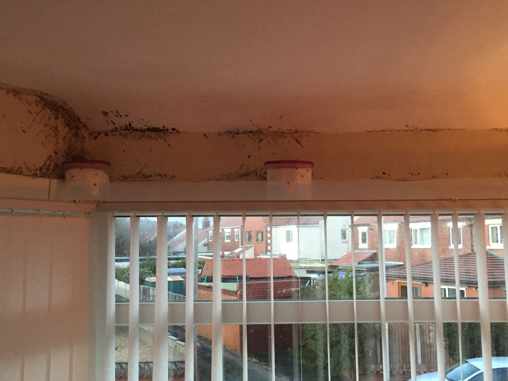 Damp Problems - Call Lancashire Damp Proofing