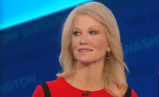 Kellyanne Conway admits Trump is violating the Constitution with DC hotel but 'the food is delicious'