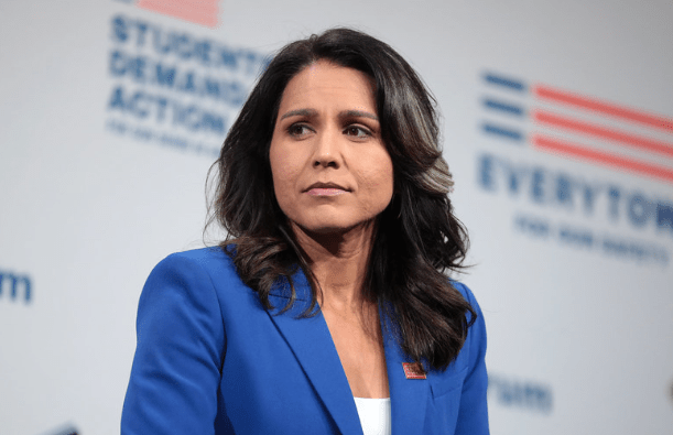 Nate Silver reveals where Tulsi Gabbard's support is really coming from
