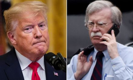 Trump is reportedly obsessed with sending Bolton to jail for writing book exposing him