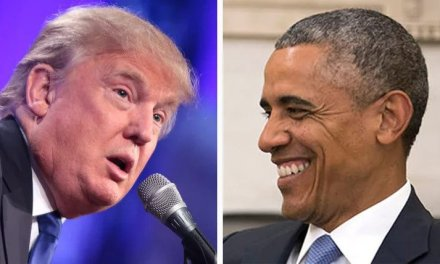 Trump resorts to his old fallback position: Tries to blame Obama for pandemic