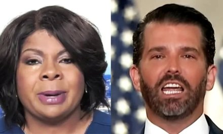 April Ryan lays a brutal fact check on Don Jr. after he tries to blame Biden for unrest in Portland