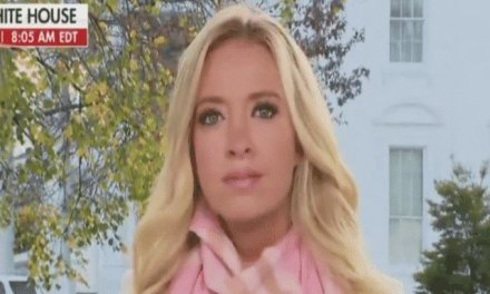 Kayleigh McEnany calls state Thanksgiving coronavirus restrictions 'Orwellian'