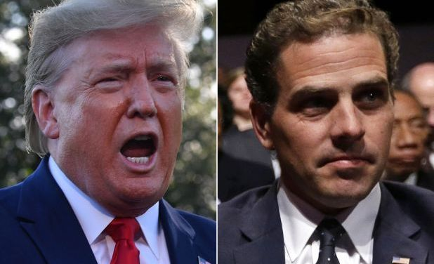 Trump may order new acting AG to appoint special counsel for Hunter Biden probe: Report