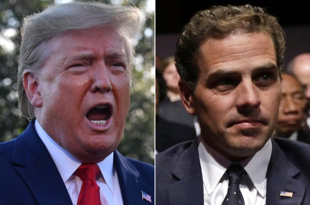 Hunter Biden dings Trump's kids for never working a real job in their lives