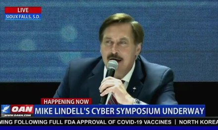 'Cyber expert' at MyPillow CEO's symposium admits he has no proof election was hacked