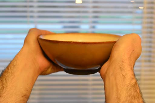 Two hands holding a bowl