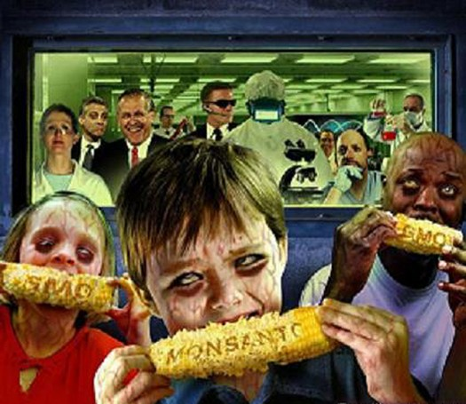 Monsantos Genetically Modified Foods