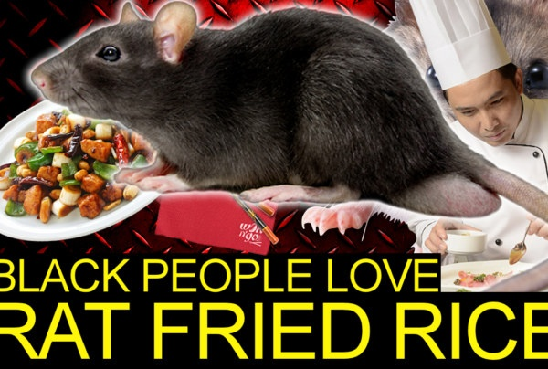 BLACK PEOPLE LOVE CHINESE TAKE OUT RAT FRIED RICE! – The LanceScurv Show